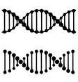 DNA simple black symbols vector image vector image