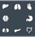 internal organs glyph icons vector image