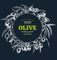 olive branches hand drawn vector image vector image