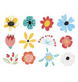 set decorative floral design elements flat vector image