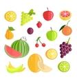 set fruits flat design vector image vector image
