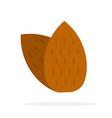 almonds vertically flat isolated vector image