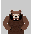 Angry bear standing vector image vector image