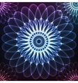 Blue shining cosmic flower vector image