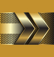 double golden arrow direction on circle mesh vector image