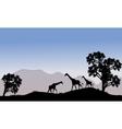 Giraffe in hills scenery vector image vector image