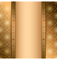 light and dark brown background with ornament vector image vector image