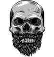 monochrome hipster skull vector image