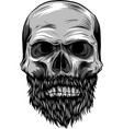 monochrome of hipster skull with vector image
