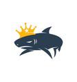 shark king logo design isolated template vector image