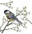Beautiful Spring Watercolor Bird vector image vector image