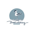 bird watching logo label emblem for your outdoor vector image vector image