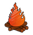 campfire flame isolated icon vector image