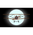Flying by Night vector image