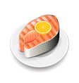 Grilled salmon isolated on white vector image