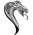 head cobra black and white vector image vector image