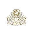 luxury lion logo vector image vector image