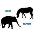 Zebra and elephant vector image