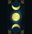 antique style hand drawn moon phases tapestry vector image vector image