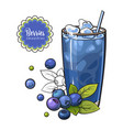 blueberry smoothie in sketch style isolated on vector image