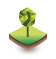 isometric palm on the piece of the soil vector image