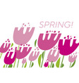 spring tulips color vector image vector image