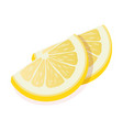 two ripe slices yellow lemon citrus fruit stand vector image vector image
