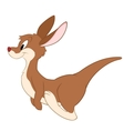 Cartoon Kangaroo B vector image vector image