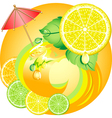 citrus ecology vector image vector image