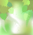 Floral background - plant leaves vector image vector image