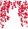 Greeting card Red maple leaves on the branches on vector image