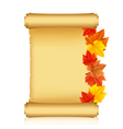 scroll with autumn leaves vector image
