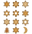 Set of Christmas gingerbread vector image vector image