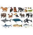 Set of different types of wild animals vector image vector image