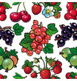 summer berries seamless pattern with fresh ripe vector image vector image