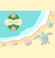 top view seashore with sea waves turtle shells vector image