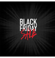 Black Friday sales Advertising Poster vector image vector image