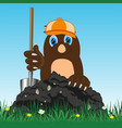 cartoon of the mole with shovel digging land vector image