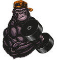graphics severe gorilla athlete performs vector image vector image