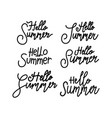 hello summer script text design template vector image
