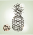 realistic vintage of tropic fruit pineapple vector image