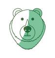 bear cartoon face