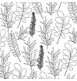 pattern leaves of plants on black silhouette vector image