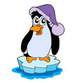 penguin on iceberg vector image