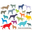 set colorful dogs silhouettes vector image