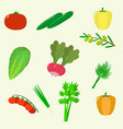 set of vegetables organic vegetarian healthy food vector image vector image