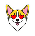 welsh corgi dog with hearts in eyes vector image vector image