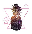 abstract polygonal tirangle fruit pineapple vector image