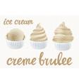 beige set of ice cream scoops poster design with vector image vector image
