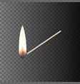 Burning match eps10